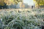 В Тульской области ожидаются заморозки